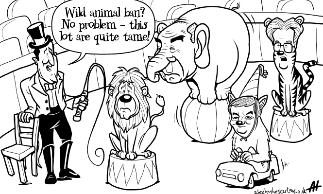 comic-2011-06-03-Wild-animal-ban.jpg